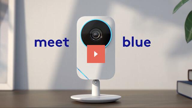 Meet Blue