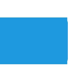 Privacy leader icon